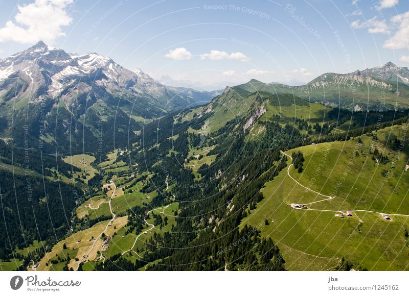 Col du Pillon Well-being Contentment Relaxation Calm Leisure and hobbies Trip Far-off places Freedom Summer Mountain Sports Paragliding Sporting Complex Nature