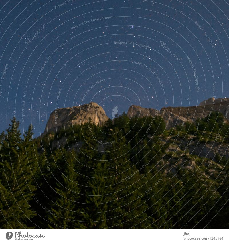 Night sky over Gsteig Calm Environment Nature Elements Sky Stars Summer Beautiful weather Tree Fir tree Forest Rock Alps Peak Saanenland Time Wall of rock Slope