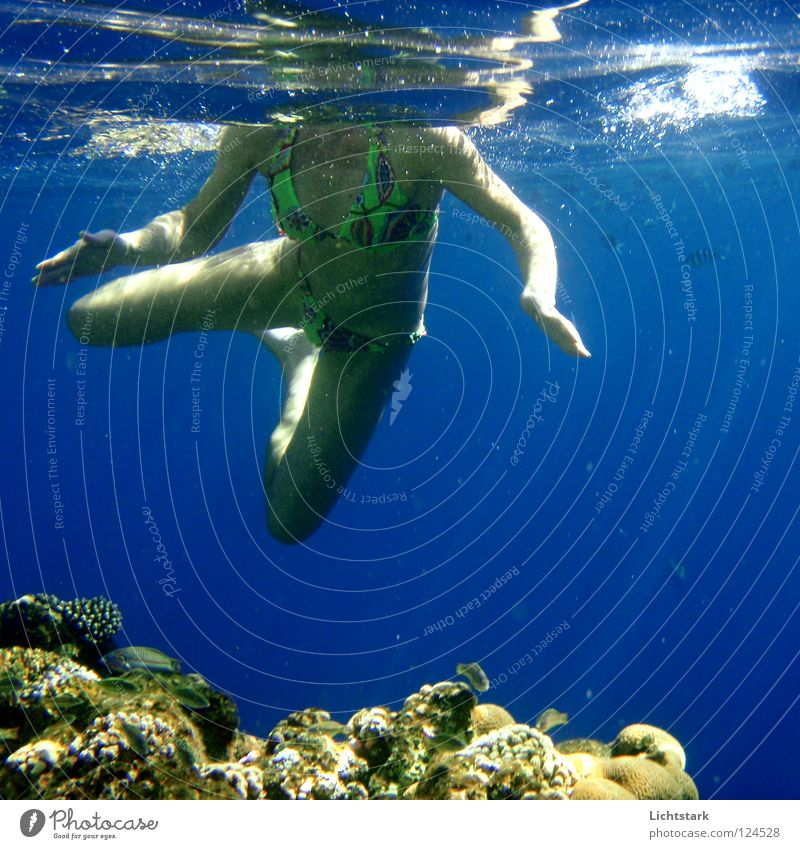 Blue Water Vacation & Travel Beautiful Ocean Joy Colour Swimming & Bathing Waves Leisure and hobbies Skin Perspective Dive Africa Sunbathing Bikini