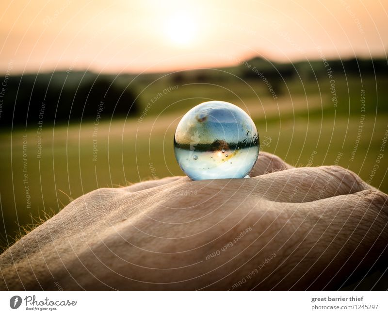 And if it were our world... Environment Nature Landscape Animal Sky Cloudless sky Horizon Sun Sunrise Sunset Sunlight Summer Weather Beautiful weather Blue
