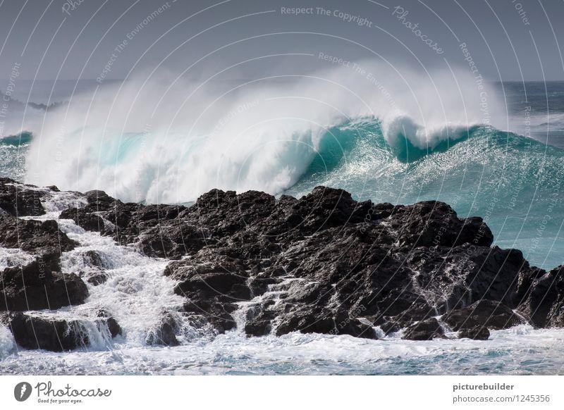 Nature Vacation & Travel Blue Summer Ocean Far-off places Coast Tourism Waves Power Esthetic Beautiful weather Adventure Elements Wanderlust Cloudless sky