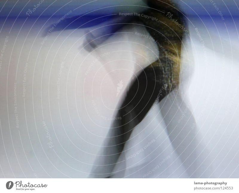 Human being White Beautiful Black Sports Movement Art Ice Elegant Flying Walking Speed Stripe Wing Driving Symbols and metaphors