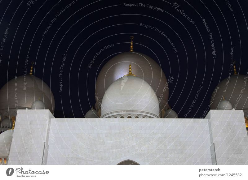 1001 night 1 Vacation & Travel Sightseeing Abu Dhabi Mosque Domed roof Esthetic Exotic Large Round Emotions Passion Beautiful Belief Humble Design Elegant Hope