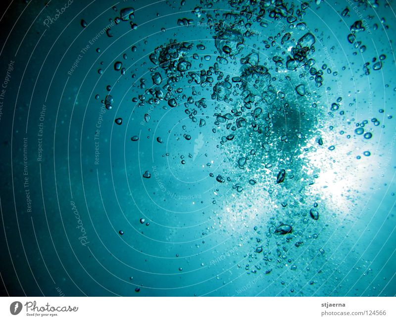 bubbles Water blister Surface of water Ocean Dive Breathe Underwater photo