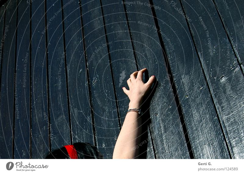 Woman Hand Black Wood Hair and hairstyles Head Fear Skin Glittering Arm Fingers Desire Longing Catch Gate Lust