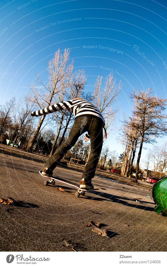 Human being Sky Tree Green Blue Summer Leaf Contentment Back Jeans Driving Skateboarding Airplane landing Tar Keg