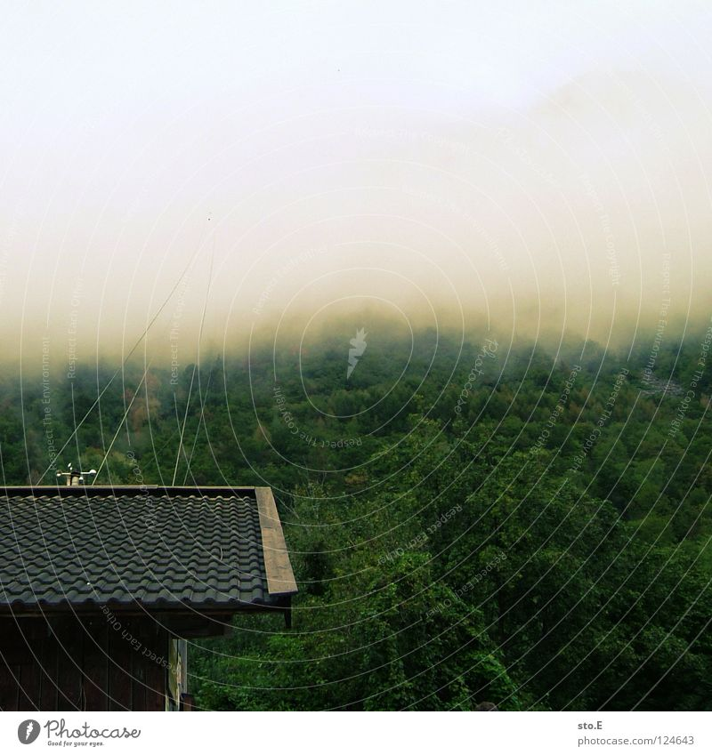 Ascension Cable car Clouds Bad weather Fog House (Residential Structure) Station Brick Roof Forest Peak Tree Green Ambiguous Eerie Sky Mountain Rope Tall Above