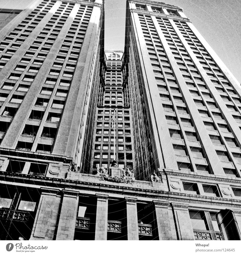 stiffness of the neck New York City High-rise USA Black & white photo Town