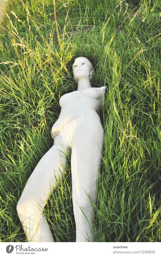 She was lying in the grass. Grass Green Exterior shot Summer Mannequin Naked False Legs no poor Leave behind