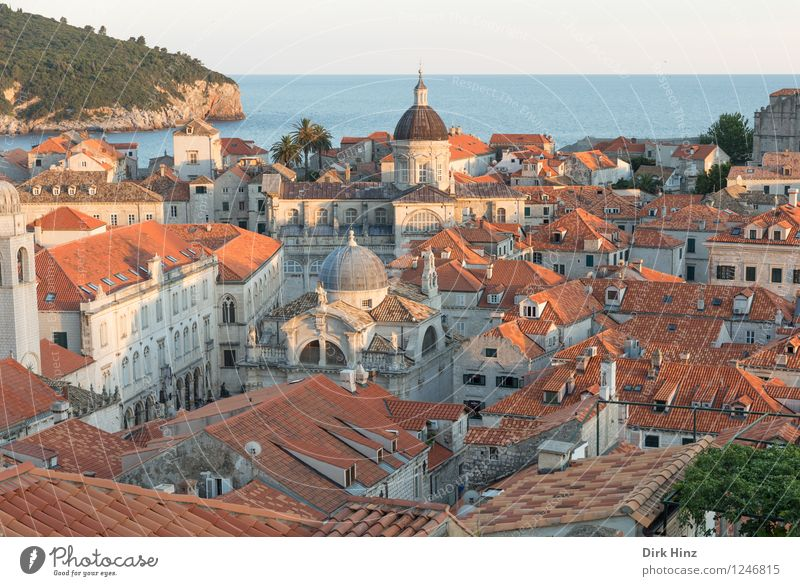 Old Town - Dubrovnik Port City Old town House (Residential Structure) Church Dome Building Architecture Roof Tourist Attraction Landmark Monument Authentic