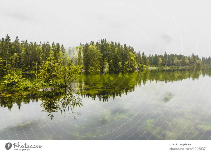 rear lake ramsau berchtesgaden Upper Bavaria Senses Relaxation Calm Leisure and hobbies Fishing (Angle) Hunting Vacation & Travel Tourism Trip Adventure