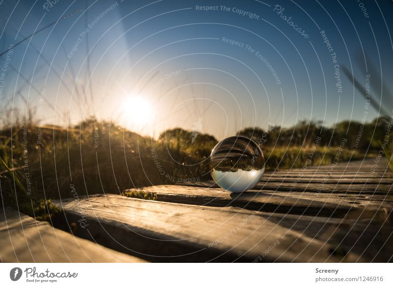 Worlds #11 Nature Landscape Plant Sky Cloudless sky Sun Sunrise Sunset Sunlight Spring Summer Beautiful weather Grass Moss High venn Eifel Glass ball