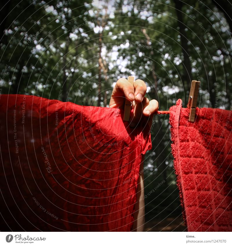 PZ3 | Red Stuff Day Preparation Hand Fingers 1 Human being Work of art Installations Beautiful weather Forest Cloth Clothesline Clothes peg Towel Hang Green