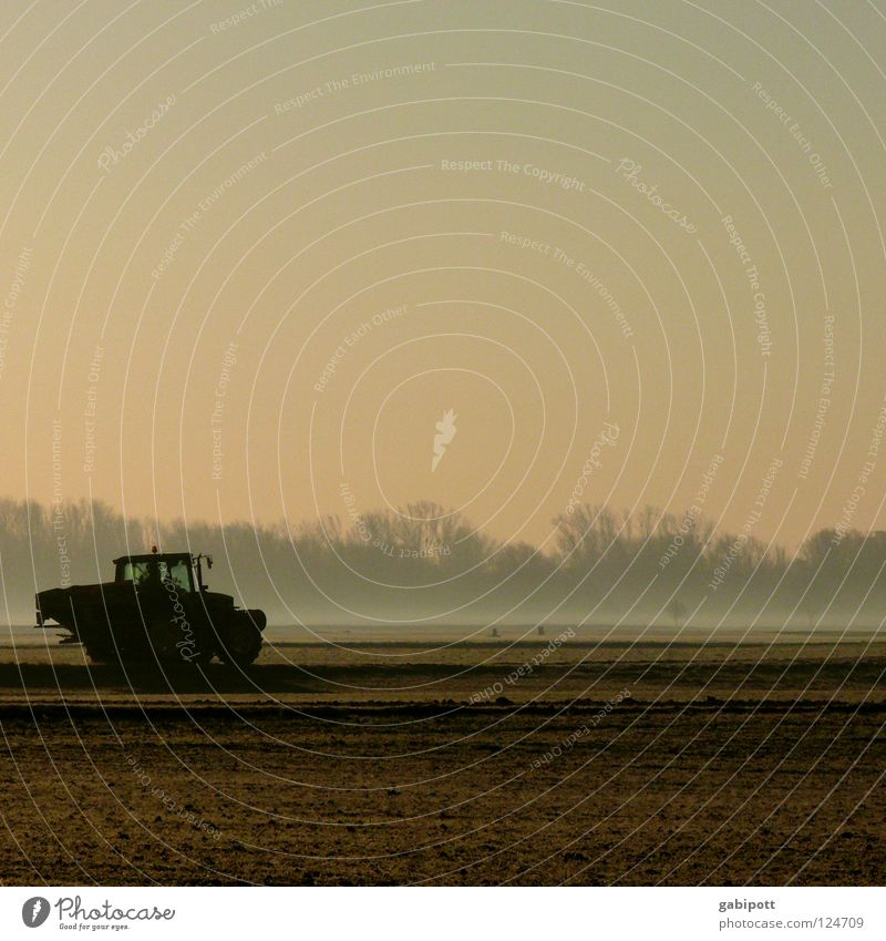 early riser Tractor Agriculture Farmer Working in the fields Field Hallway Meadow Forest Fog Morning Sunrise Manure Weed control Nitrogen Sowing Seeds