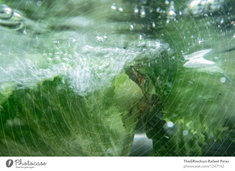 Salad cleaning like a boss Food Lettuce Green Black White Washing Tap Water reflection Underwater photo Underwater camera Air bubble Cleaning Leaf Essen