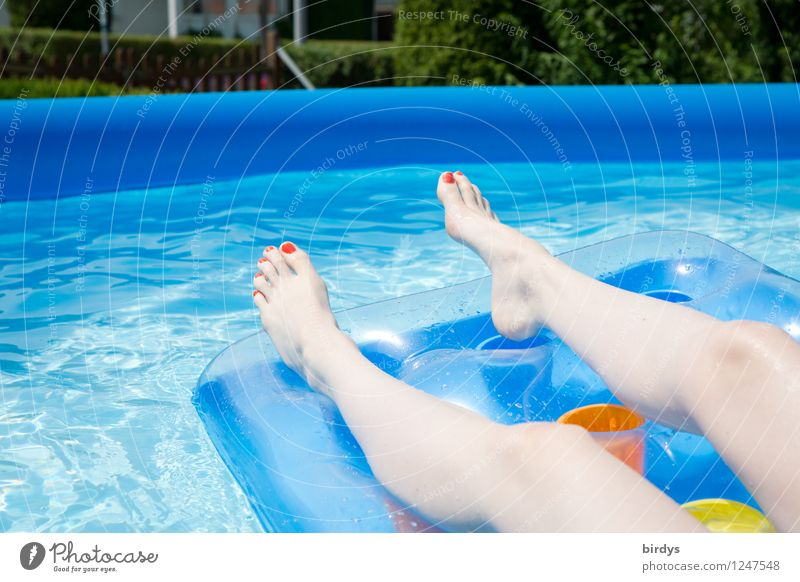 Human being Vacation & Travel Youth (Young adults) Blue Beautiful Summer Water Young woman Relaxation Eroticism Joy 18 - 30 years Adults Warmth Style Legs