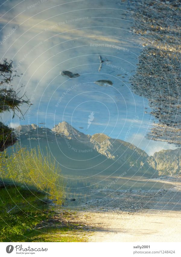 mountain in the mirror... Nature Earth Sunlight Beautiful weather Mountain Alps Peak Fluid Natural Bizarre Loneliness Idyll Dream Puddle Lanes & trails Stone