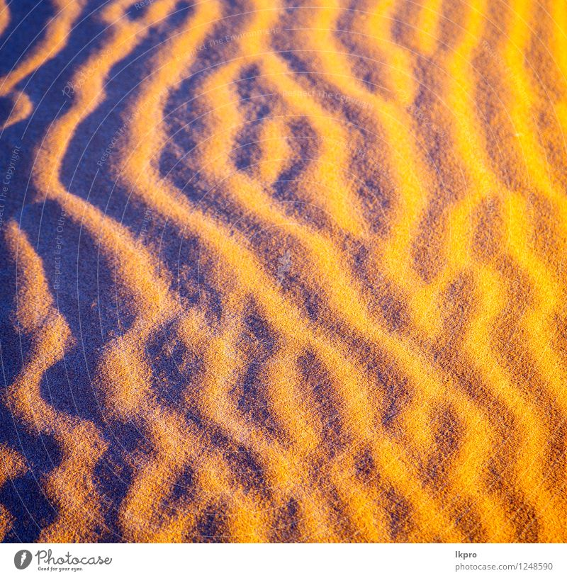 the brown sand dune in the Beautiful Vacation & Travel Wallpaper Nature Landscape Sand Beautiful weather Virgin forest Hill Hot Brown Yellow Loneliness Idyll