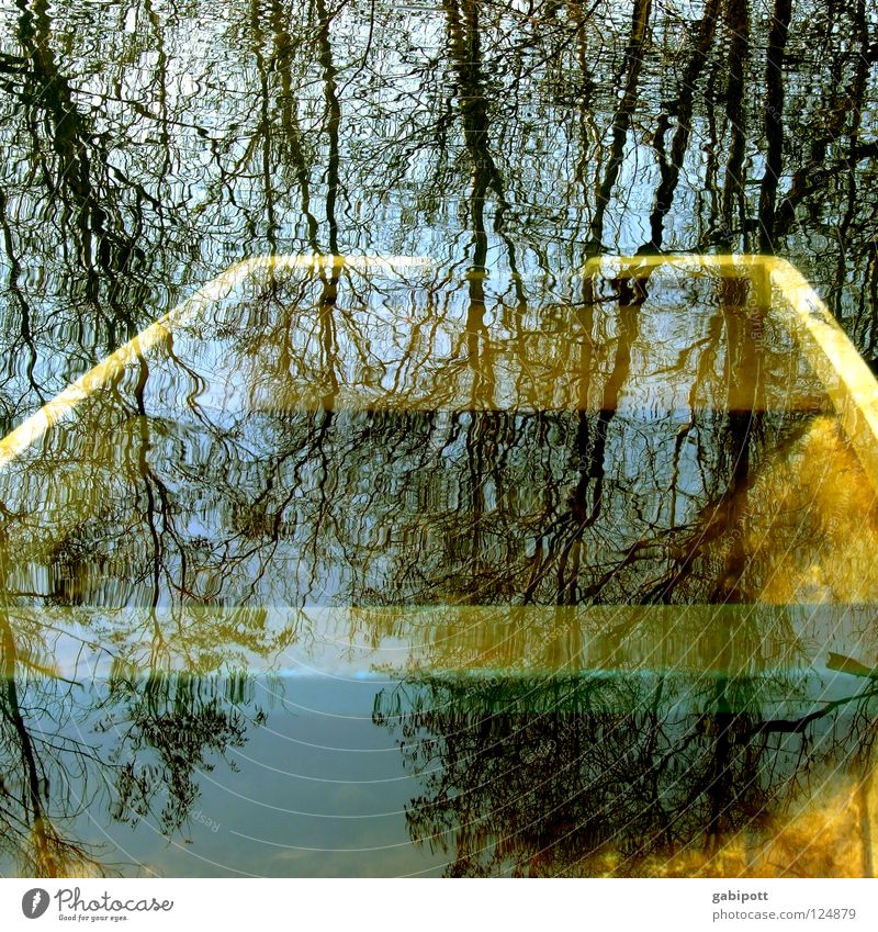 Water Tree Calm Forest Lake Dream Watercraft Floor covering Transience Peace Past Deep Fishing (Angle) Pond Surface