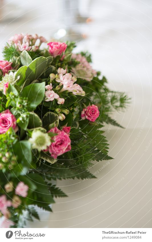 table decoration Nature Plant Rose Gray Green Violet Pink Turquoise White Table decoration Flower Detail Fern Bouquet Leaf Noble Decoration Food table Essen