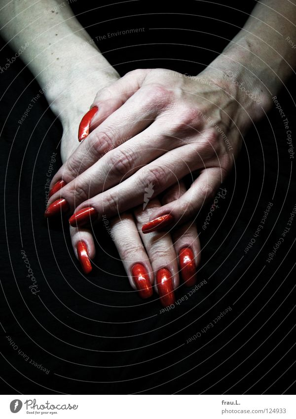 blood red Skin Nail polish Relaxation Human being Woman Adults Hand Claw Authentic Thin Long Red Varnished Women`s hand Extreme Vessel Colour photo