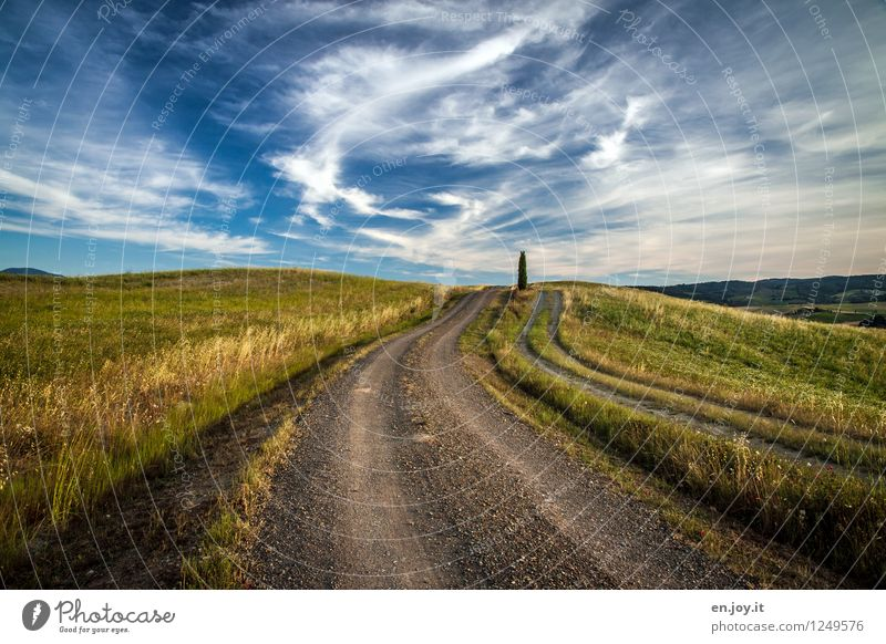 right in the middle Life Vacation & Travel Tourism Trip Far-off places Summer Summer vacation Hiking Environment Nature Landscape Sky Clouds Horizon Sunlight
