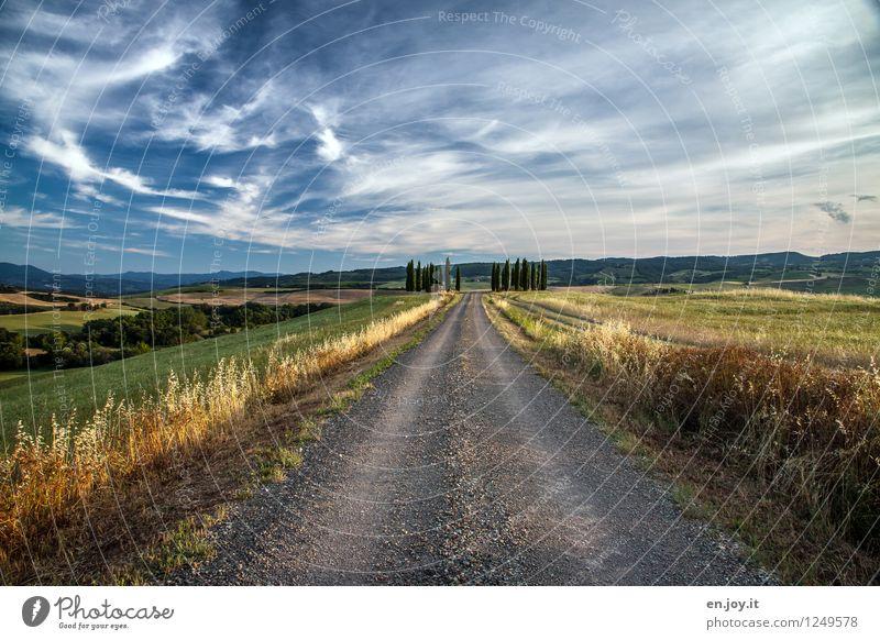 Sky Nature Vacation & Travel Summer Landscape Clouds Far-off places Environment Lanes & trails Grass Horizon Tourism Field Joie de vivre (Vitality) Italy