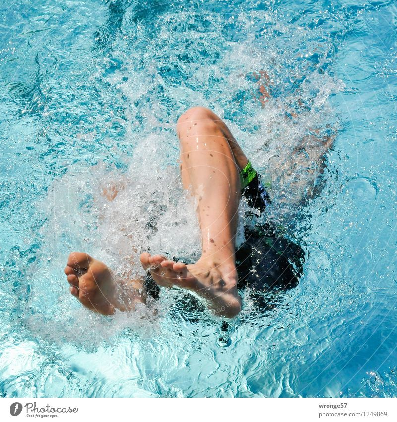 Human being Youth (Young adults) Man Blue Green Young man Adults Sports Legs Swimming & Bathing Brown Masculine Near Swimming pool Athletic