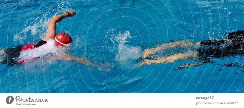 triathlon Sports Sporting event Triathlon Swimming Swimming & Bathing Swimming pool Human being Masculine 2 Athletic Blue Red Black White
