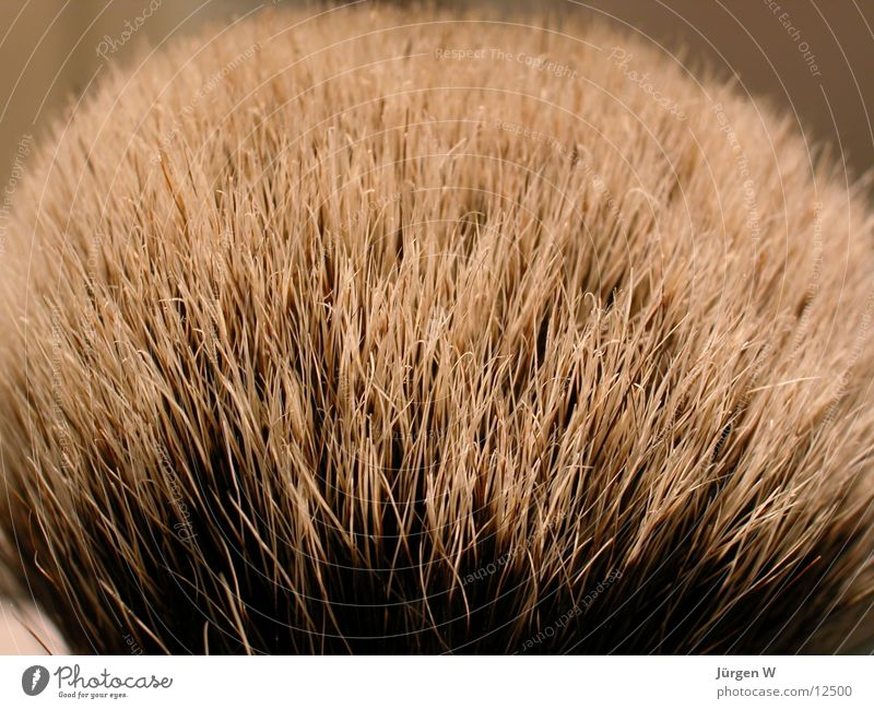 Hair and hairstyles Bathroom Soft Things Paintbrush Shave Badger