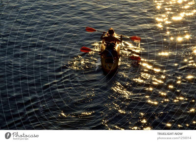 "in the gold rush... Joy Healthy Fitness Wellness Senses Leisure and hobbies Trip Adventure Freedom Summer Sun Waves Aquatics ""Paddling Canoe"" Human being"