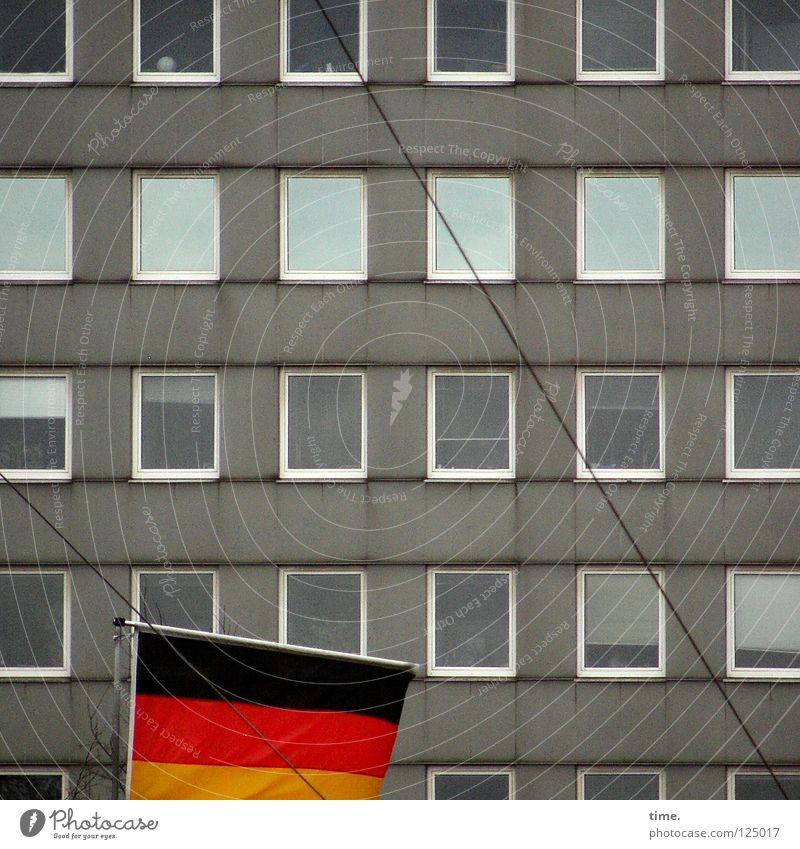 Flag in front of plate House (Residential Structure) Wall (building) Window Glazed facade Gray Reflection Wire Rectangle Cloth Landmark Decoration