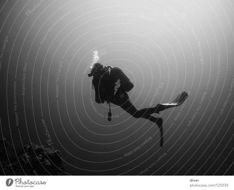 into the deep Dive Diver Hover Ocean Man Loneliness Underwater photo Aquatics Black & white photo diving Water Sports Human being