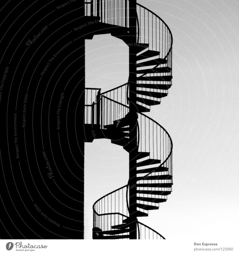Helix_Noir Graphic Winding staircase Rotate Detail Black & white photo helix noir Handrail Stairs Snail Contrast Illustration Lanes & trails Bend Spiral