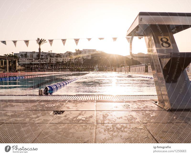 Summer Swim Training Fitness Swimming & Bathing Sports Aquatics Track and Field Swimming pool Movement To enjoy Yellow Gold Water training Early fall Sunrise