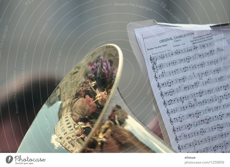 Charleston Leisure and hobbies Feasts & Celebrations Music Musician Orchestra Tuba Musical notes Clef marching music music reading Happiness Moody Joy