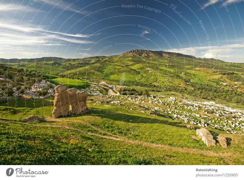 Ruins near Fes Environment Nature Landscape Plant Sky Clouds Horizon Summer Weather Beautiful weather Tree Grass Bushes Meadow Forest Hill Fez Morocco