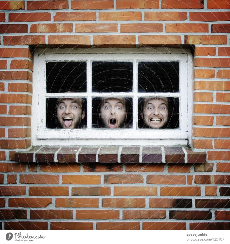 Man Joy Window Wall (building) Wall (barrier) Stone Glass Closed Crazy Brick Whimsical Window pane Freak Captured Humor