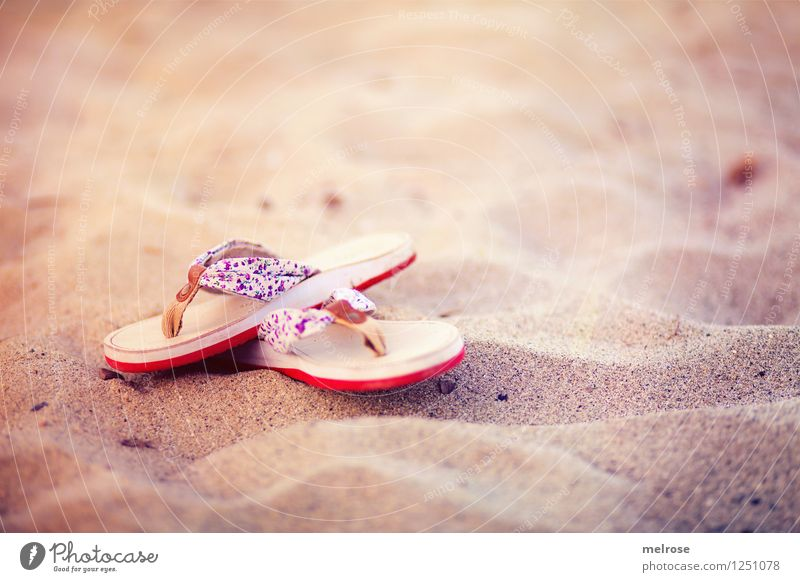 Vacation & Travel Beautiful Summer Sun Relaxation Red Loneliness Landscape Calm Beach Style Swimming & Bathing Brown Moody Sand Dream
