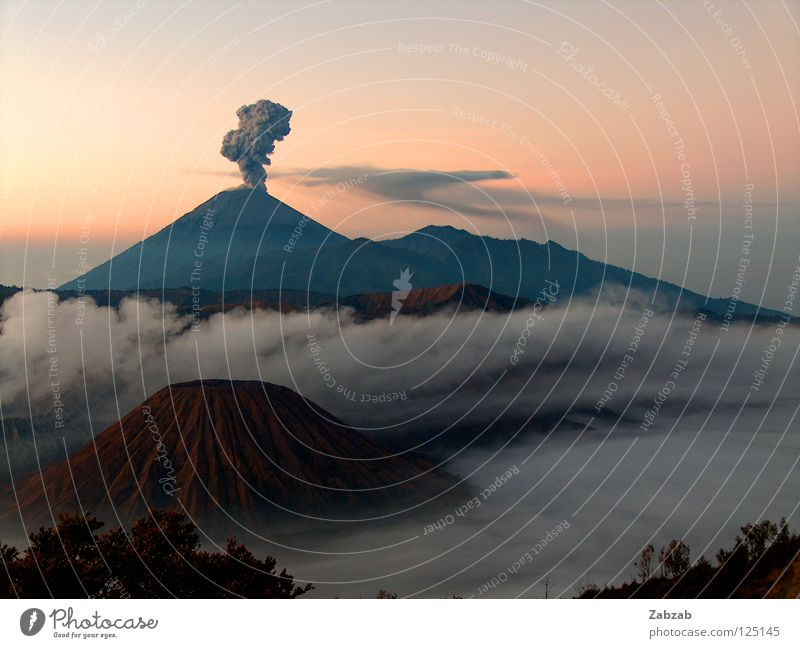 bromo Calm Serene Outbreak Asia Indonesia Java Eruption Pink Red Brown Gray Black Moody Exterior shot Fog Clouds Tree Bushes Twilight Horizon Mountain Volcano