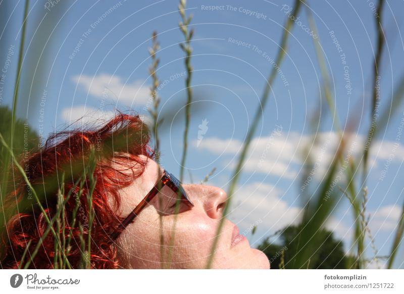 Woman Sky Summer Relaxation Calm Face Adults Spring Meadow Grass Healthy Garden Lie Dream Contentment To enjoy