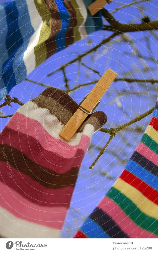 sock tree Stockings Laundry Hang up Clothesline Spring Washing day Spring cleaning Stripe Striped Clothing laundry day clothes pegs To hold on