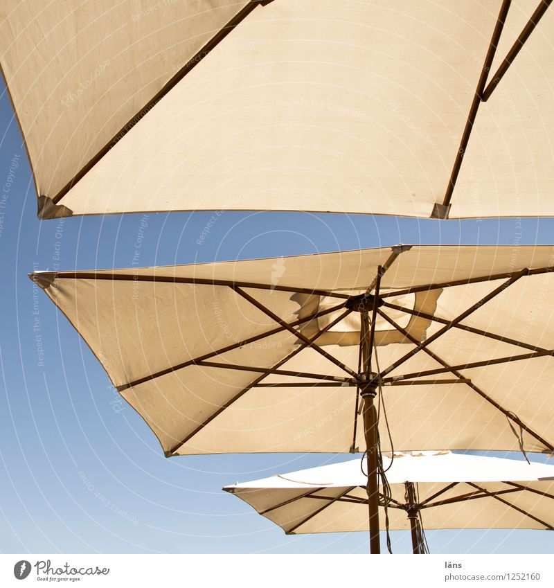 Sky Summer Gastronomy Umbrellas & Shades Sunshade Safety (feeling of) Weather protection