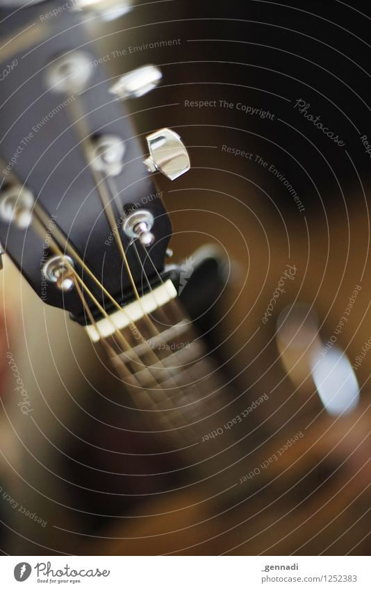 rock star Entertainment electronics Guitar Playing Rock musician String instrument Music Measuring instrument Colour photo Deserted Copy Space top