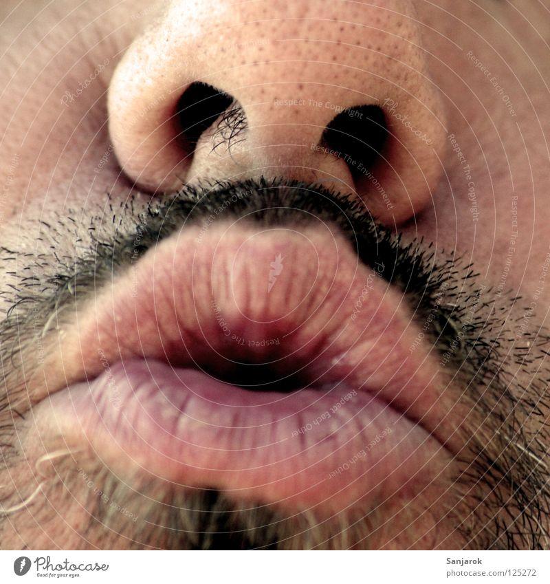 Kiss! Kissing Friendship Lips Facial hair Moustache Beard Nasal hair Nostril Insight Cheek Sing Choir Sweet Honey To talk White-haired Gray-haired Black-haired