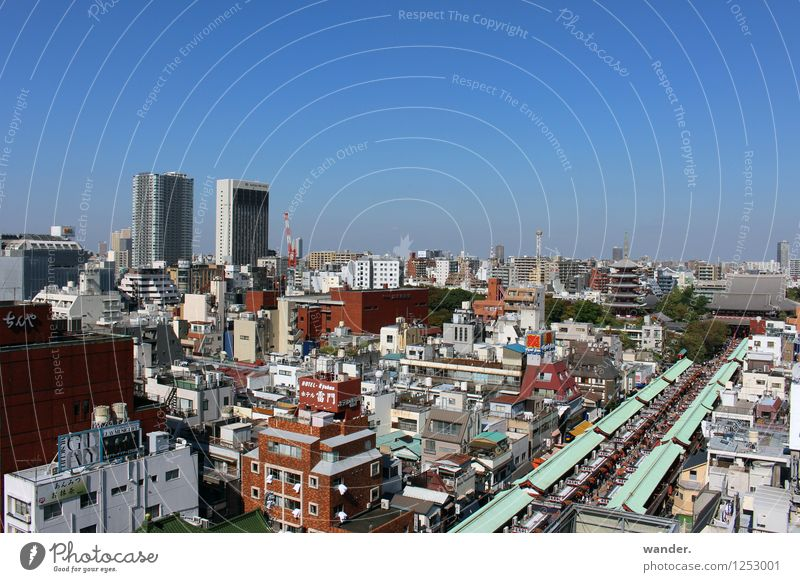 View of the big city Tokyo, Japan Far-off places Sightseeing City trip Sky Cloudless sky Horizon Sunlight Beautiful weather Asia Town Capital city Port City