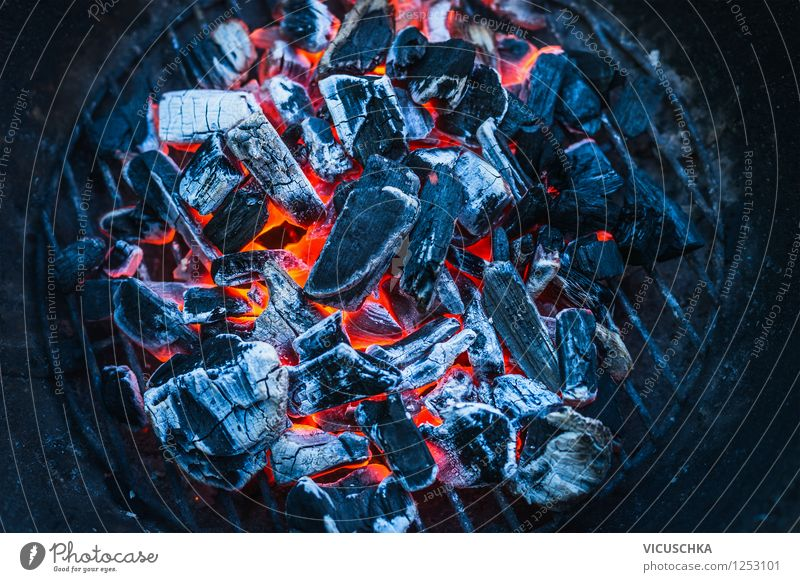 Summer Red Joy Dark Yellow Warmth Style Background picture Lifestyle Moody Design Power Warm-heartedness Fire Blaze Barbecue (event)