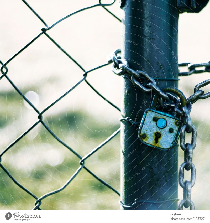 No getting through Wire netting fence Fence Padlock Meadow Green Closed Key Passage Captured Detail Blue Chain no escape Exterior shot