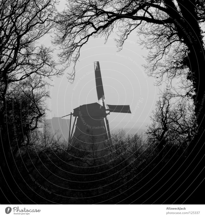 a little mill stands in the woods... Branchage Tree Bushes Black White Mill Windmill Silhouette Dreary Potsdam Ancient Historic Black & white photo Germany Wing