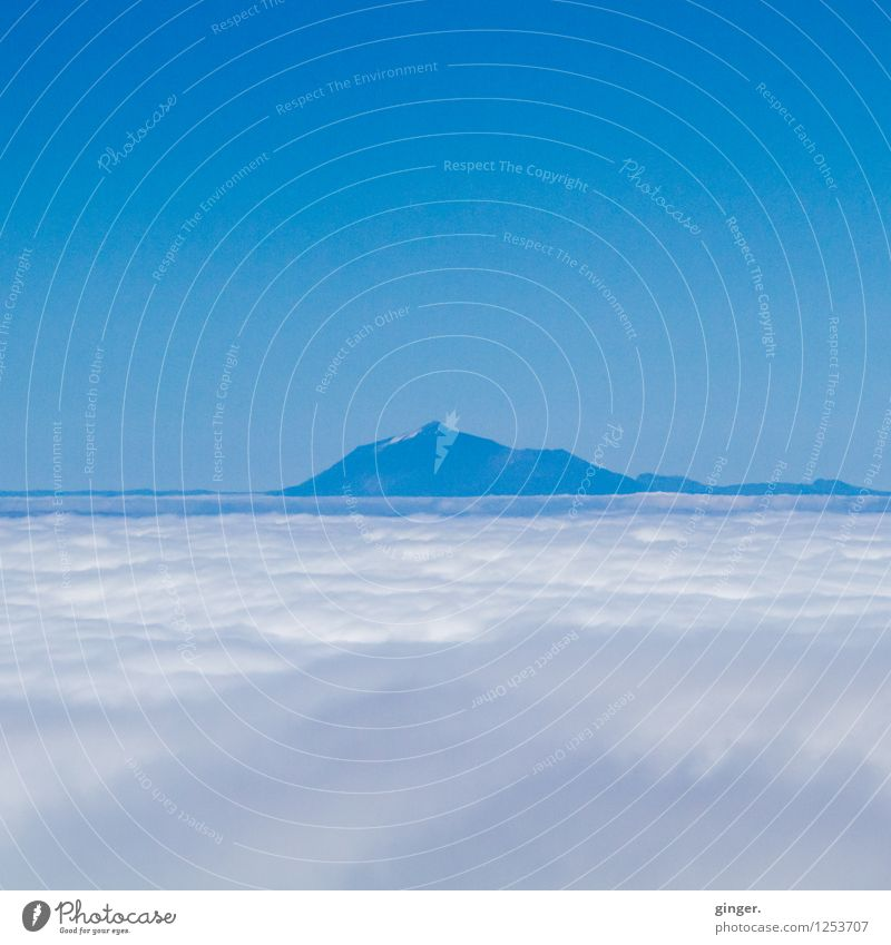 Sea of clouds Environment Nature Landscape Sky Clouds Spring Beautiful weather Rock Mountain Teide Peak Snowcapped peak Blue White Opposite Stick out Calm